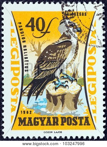 HUNGARY - CIRCA 1962: A stamp printed in Hungary shows an Osprey (Pandion haliaetus)