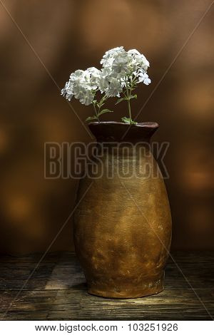 Still Life Of Flowers In Vase.