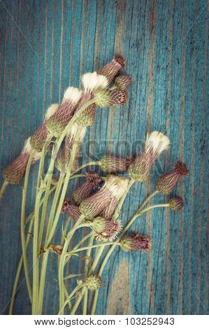 Summer Meadow Flowers Bouquet. Floral Composition In Rural Vintage Style