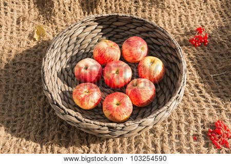 Ripe Apples In A Wicker Basket