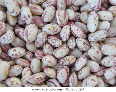 Bean Rounded With Red Specks Texture Background