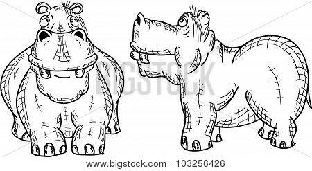 Figure Hippopotamus On A White Background, Vector