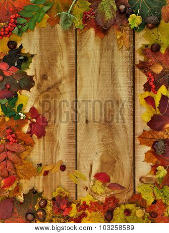 Autumn Leafs And Yield