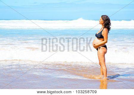 Beautiful pregnant woman at the beach