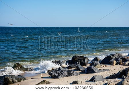 Sandy Hook Shoreline