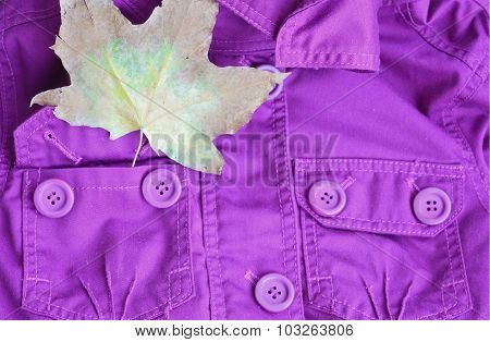 Purple jacket and a maple leaf in the pocket. Bright autumn look