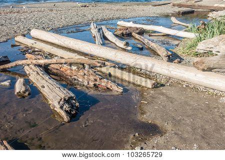 Seahurst Dirftwood Logs 2