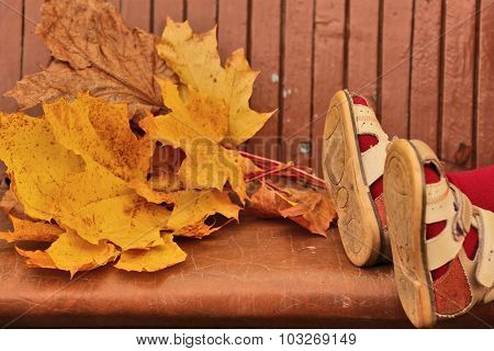 Baby Legs In Sandals And Yellow Maple Leaves Lying On Bench