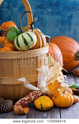 Pumpkins and variety of squash