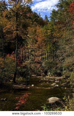 Fires Creek, North Carolina