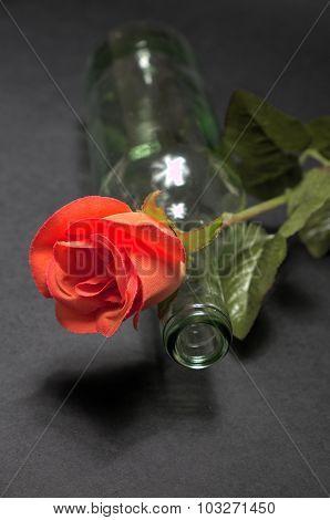 Empty Blanc Wine Bottle Witk Red Rose On Black Background
