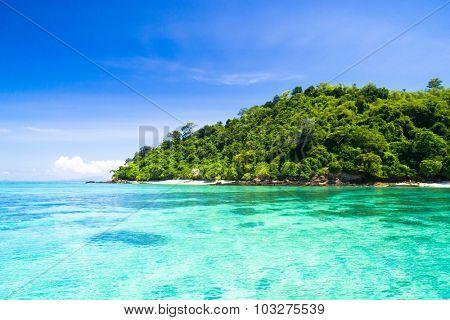 On a Sunny Beach In Paradise Found