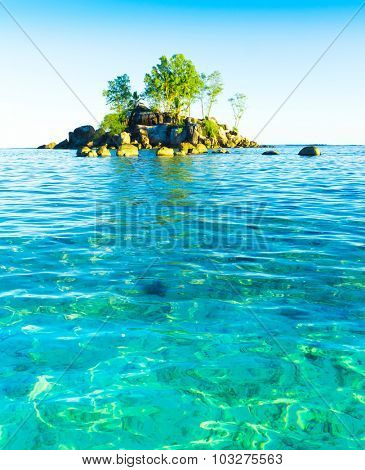 Lagoon Corals Summer
