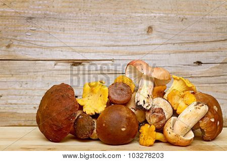 Mushroom Boletus over Wooden Background. Autumn Cep Mushrooms picking