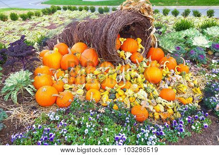 Colors of autumn and Halloween with pumpkins.