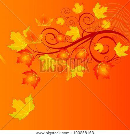 Illustration of autumn background