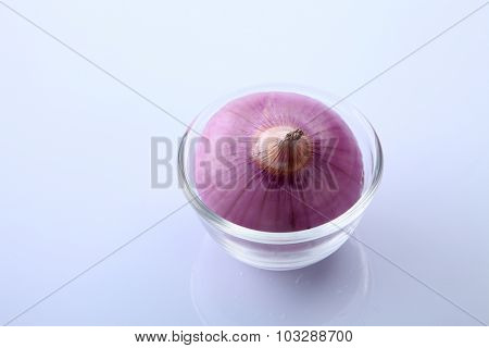 onion on the white background