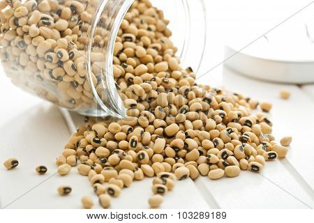uncooked beans on kitchen table