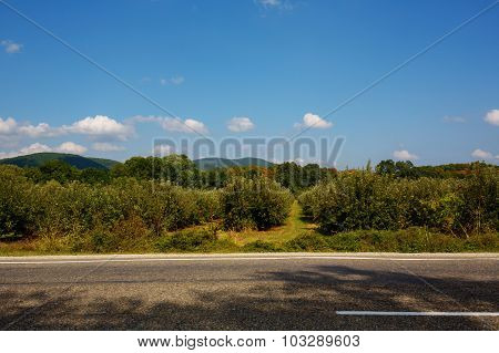 Summer Landscape With Road, Trees, Mountains And Clouds.