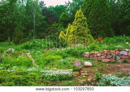 Flowerbed, Trees And Cuted Bushes In Garden. Landscaping. Garden