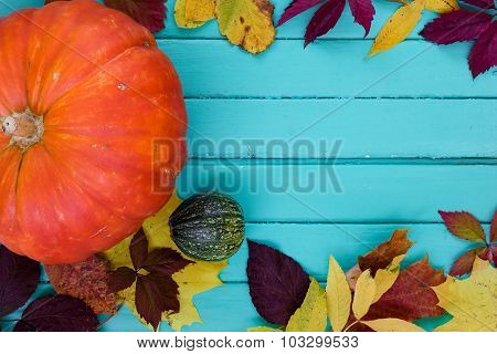 Pumpkin and small marrow with autumn leaves