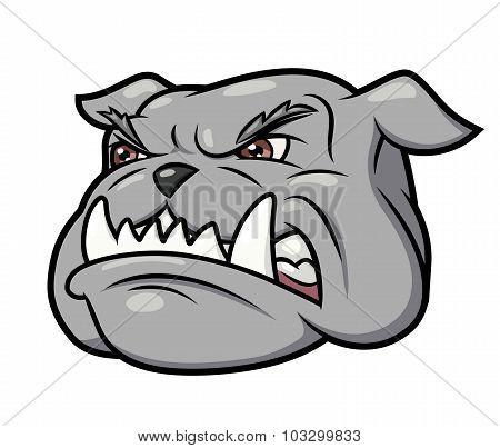 Aggressive bulldog 3