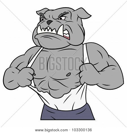 Aggressive bulldog tearing his shirt