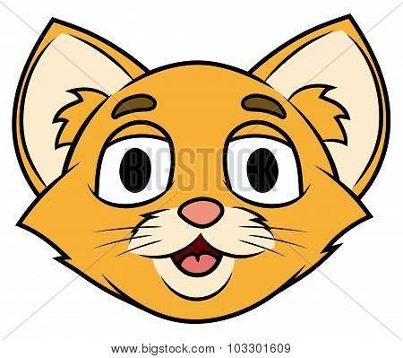 Smiling little kitten head