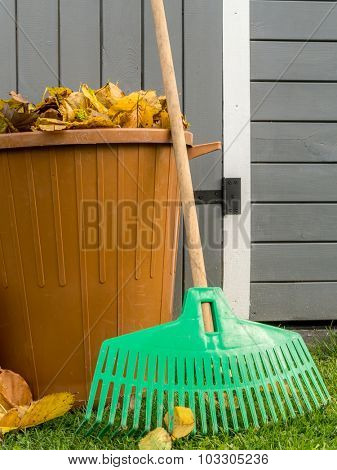 Pile of dead fall leaves swept and dumped into plastic bin with fan rake resting against wooden shed