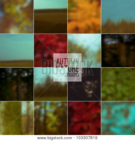 Set Of Blurred Backgrounds Nature