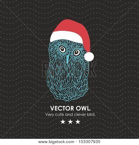 Cute owl in santa hat.