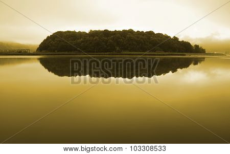 Forest reflecting on Olt Valley