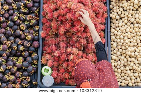 Malaysian Seasonal Fruits From Left Mangosteen, Rambutan And Lanzone On Market Display
