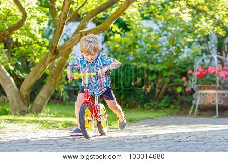 Kid Boy Driving Tricycle Or Bicycle In Garden
