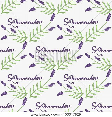 Lavender. Seamless pattern with flowers and calligraphic word Lavender on the white background. Hand
