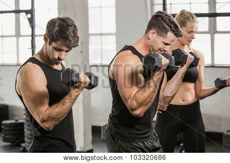 People exercising with dumbbell at the gym