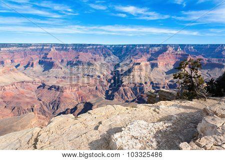 Grand Canyon Views