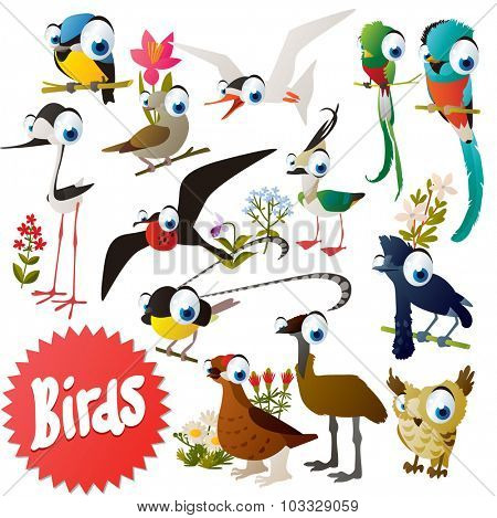 Adorable cartoon comic birds set: bluetit, dove, quetzal, plover, grouse, emu, umbrellabird, bird of paradise, tilt, owl, tern, frigate