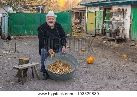 Ukrainian peasant with haricot harvest at the homestead
