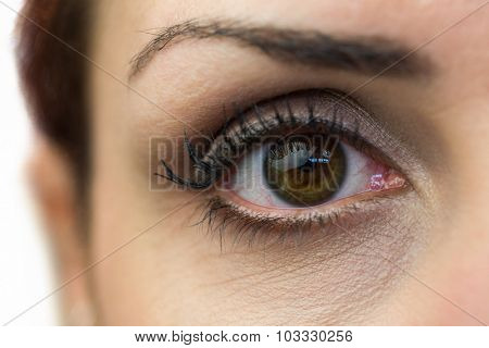 Close-up portrait of woman eye against white background