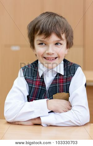 Diligent Schoolboy Sitting At Desk, Classroom