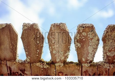 old wooden fence with lichen