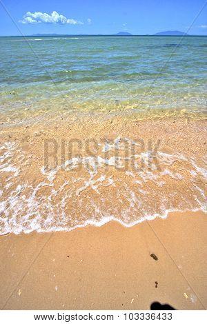 Paradise Beach Seaweed  Indian Ocean   Be   And Foam