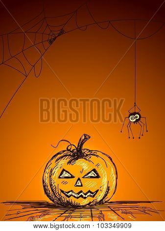 Halloween Sketch of Pumpkin and Spider on web, Hand drawn illustration