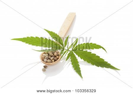 Cannabis Seeds On Wooden Spoon.