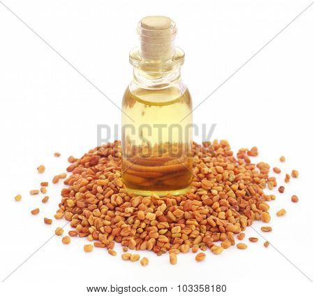 Fenugreek With Oil In Bottle