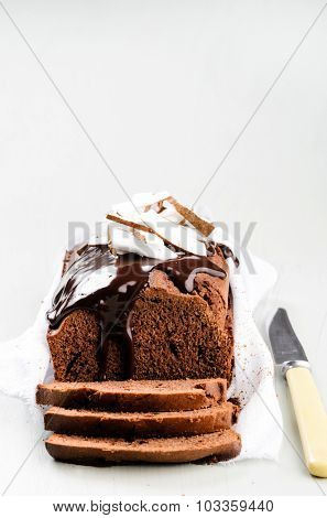 Chocolate cake with chocolate frosting and coconut flakes