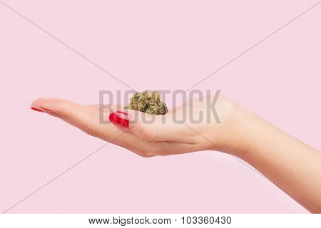Woman Holding Cannabis Bud.
