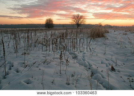 Winter Morning In Poland.horizontal View.