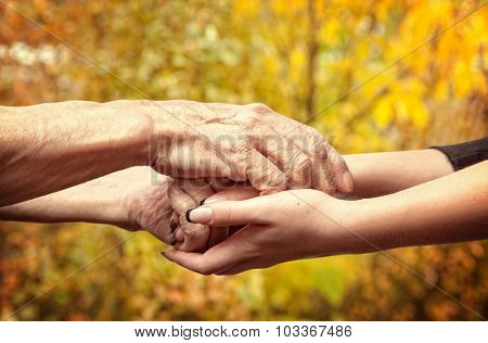 Autumn. Hands of an elderly senior holding the hand of a younger woman